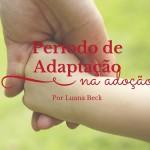 Período de adaptação em uma adoção