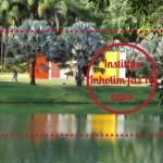 Instituto Inhotim faz dez anos