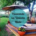 Passeando na Vinícola Miolo