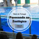 Passeando no Zoológico de Lisboa