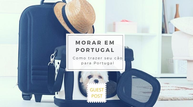 como é trazer seu cão do brasil para portugal