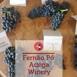 Fernão Pó Adega Winery – Vinhos de Palmela