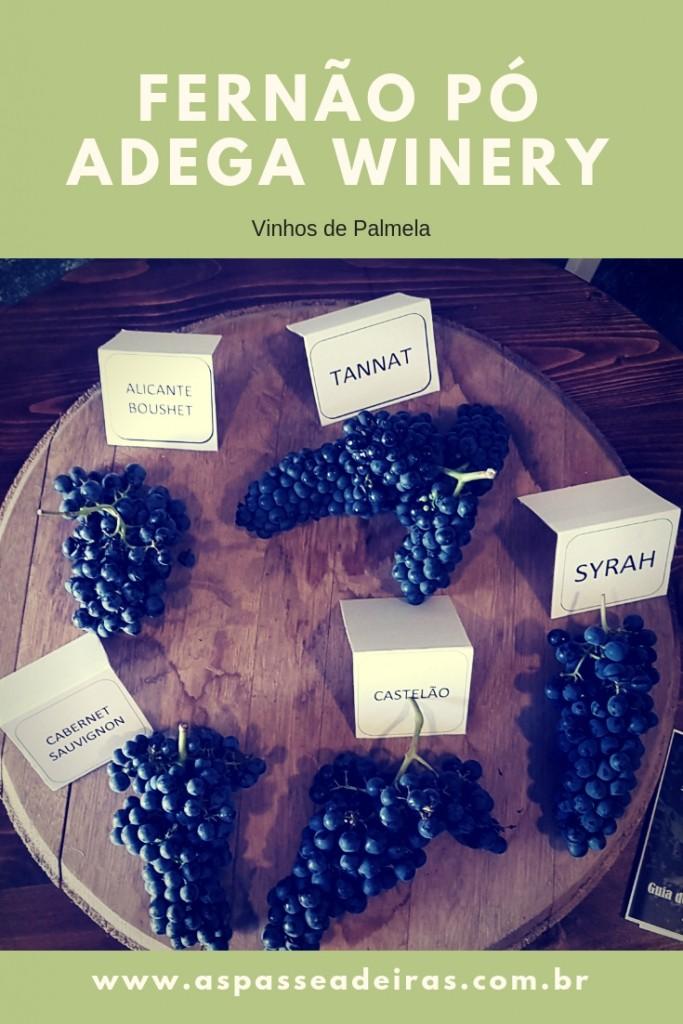 Fernão Pó Adega Winery