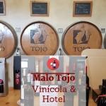 Vinícola Malo Tojo em Azeitão