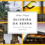 Lagar Oliveira da Serra