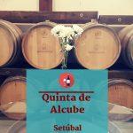 Quinta de Alcube Vinhos de Azeitão
