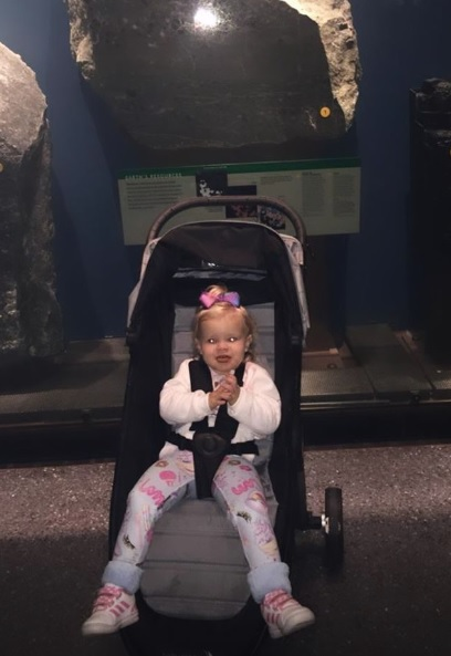 Walt Disney world com bebes